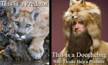 Fur and skin trade - Fur coat this is a predator this is a douchebag