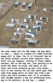 Fur and skin trade - Fur farms puppy mills