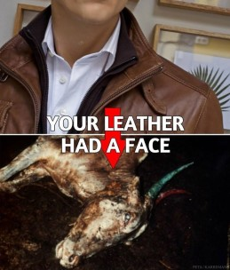 Fur and skin trade - Leather had a face