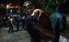 Laboratory testing - Beagles set free 3