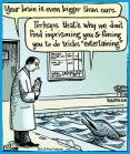 Laboratory testing - Cartoon dolphins