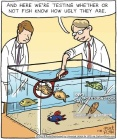 'And here we're testing whether or not fish know how ugly they are.'