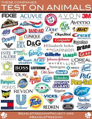 Laboratory testing - Companies that test on animals 04