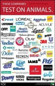 Laboratory testing - Companies that test on animals 05