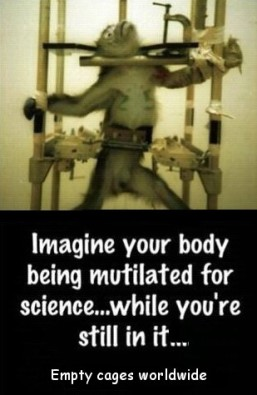 Laboratory testing - Imagine your body being mutliated