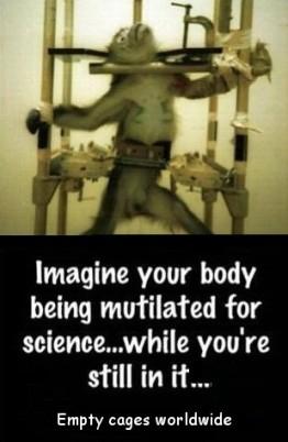 Laboratory testing - Imagine your body being mutliated