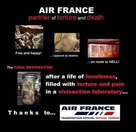 Laboratory testing - Monkeys Air France