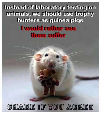 Laboratory testing - Rats hunters instead