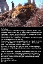 Lions - Poem