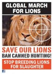 Lions - Poster for canned hunting 07
