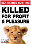 Lions - Poster for canned hunting 09