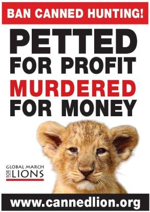 Lions - Poster petted for profit murdered for money