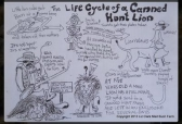 Lions - Posters stages of canned hunting hand drawn
