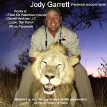 Lions - Trophy hunting 08