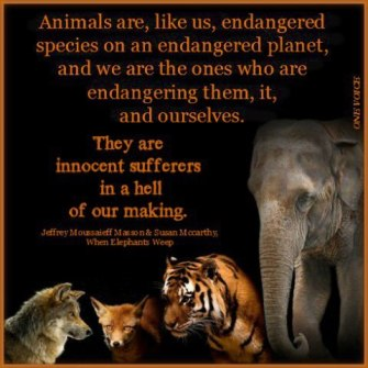 Message - Abusers animals innocent sufferers