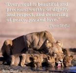 Message - Lions that every soul worthy of dignity