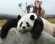 People places companies - Melissa Bachman with panda