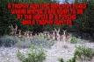 Trophy hunters - Deer ranch in Texas