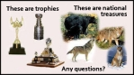 Trophy hunters - Trophy and animals know the difference