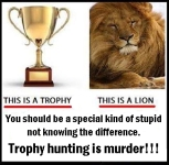 Trophy hunters - Trophy and lion difference 02