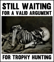 Trophy hunters - Waiting skeleton 10 coffin 1