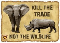 Wildllife - Kill the trade