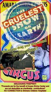 Zoo 10 Message - Circuses