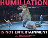 Zoo 16 Message - Zoos Humiliation