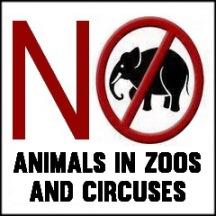 Zoo 18 Message - Zoos no