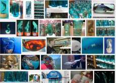 69 Oceans and rivers - Sharks baby in bottle Gsearch