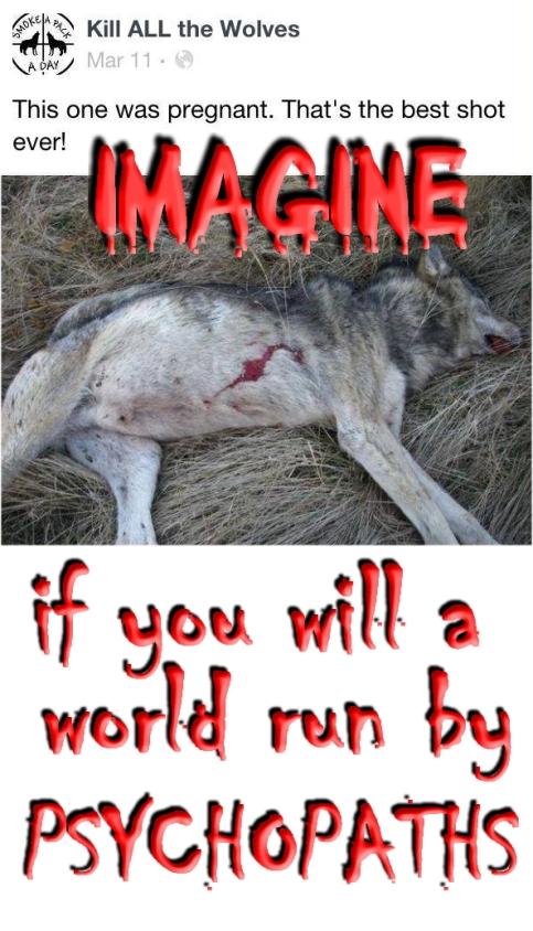 Trophy hunters - Psychos imagine a world wolf pregnant