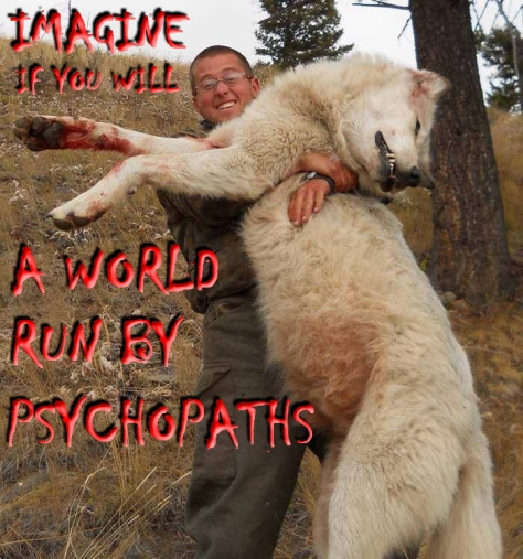 Trophy hunters - Psychos imagine a world wolf white 01
